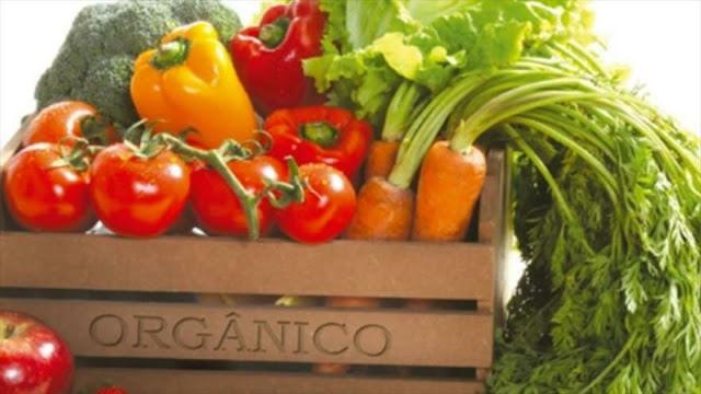 Los alimentos 'bio' no son más saludables que los convencionales