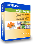 repair dokumen