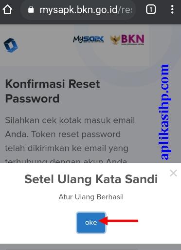 Reset Password di mysapk.bkn.go.id berhasil