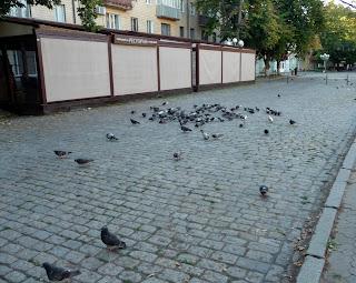 Полтава. Вул. Соборності. Пішохідна зона