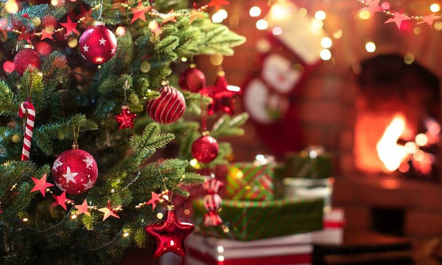 How to Prepare An Eye-Catching Christmas Tree At Home?
