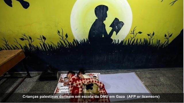 Conflito Palestina-Israel: 62 crianças mortas na última semana