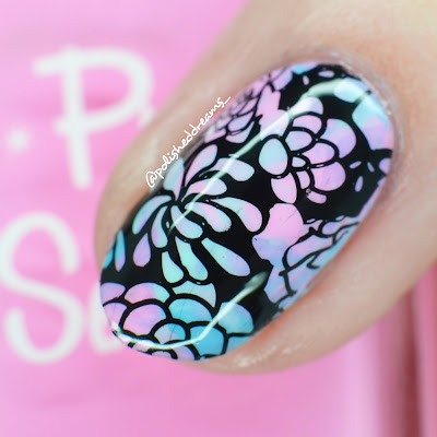 UberChic Beauty Succulents Negative Space by Polished Dreams