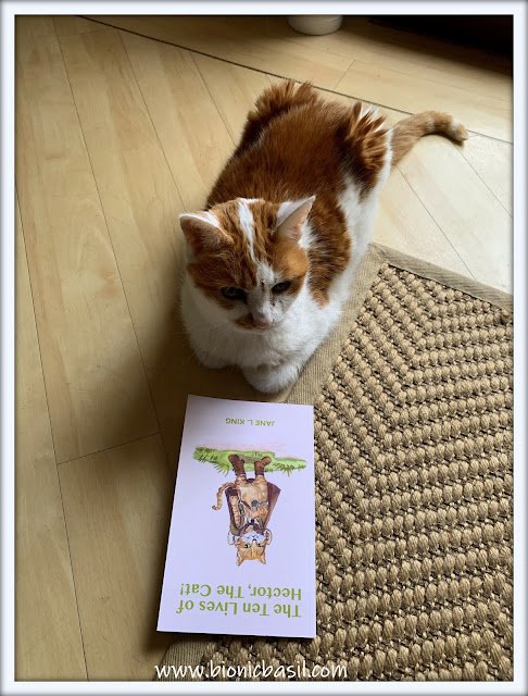 Book Reviews with Amber  #146 ©BionicBasil®The Ten Lives of Hector The Cat
