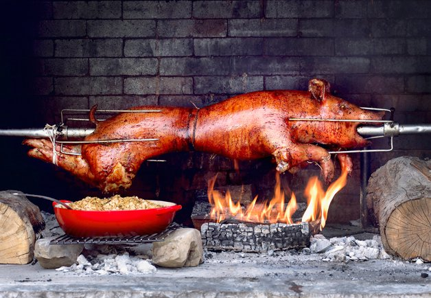 Roast pig picture