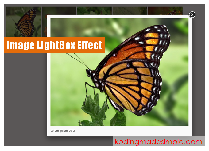 Image-Lightbox-effect-jquery