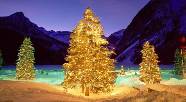 Achtergrond met verlichte bomen in de vallei met Kerst