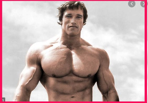 Arnold Schwarzenegger Wiki/biography in Hindi