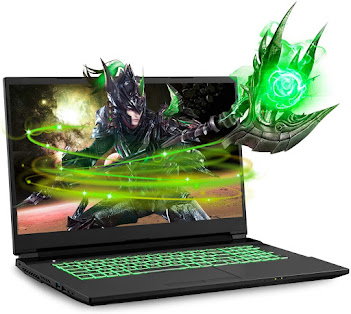 Sager NP7877DW 17.3-Inch Thin Bezel FHD 144Hz Gaming Laptop