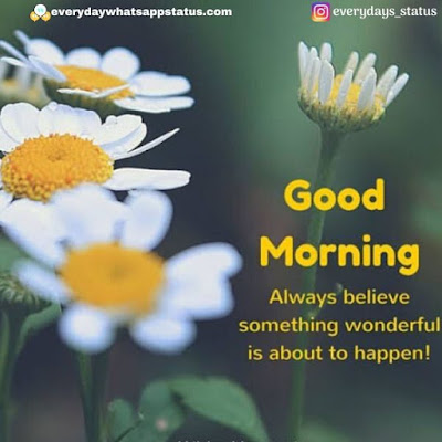 good morning photo download | Everyday Whatsapp Status | Unique 20+ Good Morning Images With Quotes