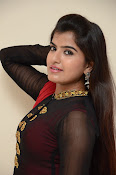 Keerthana at Rudra IPS audio launch-thumbnail-14