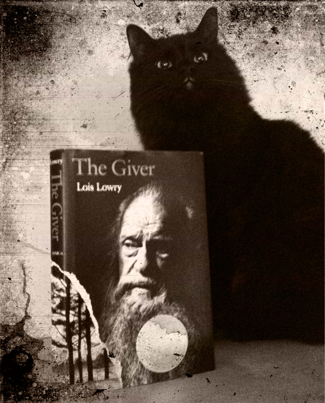 Czech Vegan In America The Giver By Lois Lowry