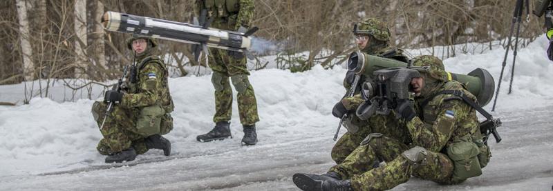 Естонія отримала ракети Javelin