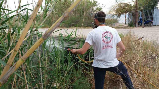 Αδιάκοπη η καταπολέμηση των κουνουπιών από τον Δήμο Ναυπλιέων
