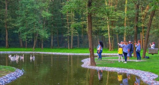 istanbula yakın doğal güzellikler ormanya doğal yaşam parkı