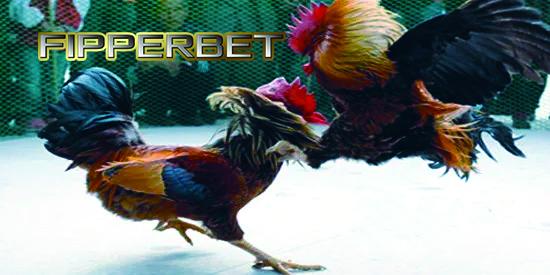 ayam bangkok s128