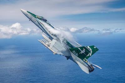 Australian Hornet photo soot replacement