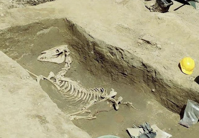Over 250 burials and the skeleton of a horse unearthed at ancient necropolis in Milan