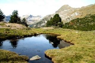 Puro Pirineo.