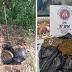 PM encontra droga que pertencia a traficante morto em troca de tiros em Serrinha