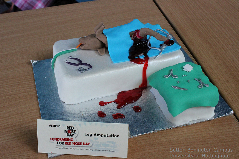 Four Paws And Whiskers Veterinary Inspired Cakes