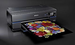 Epson SureColor P800 Driver Download