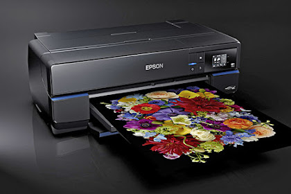 Epson SureColor P800 Driver Download and Review