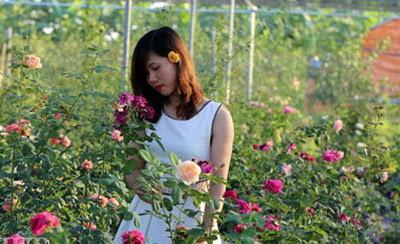 Nghiễm nhiên- Nguyễn Minh Phúc
