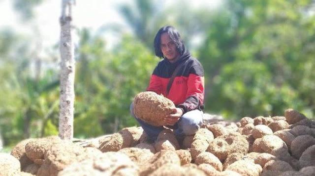 Dulunya Seorang Pemulung, Pria ini Kini Jadi Petani Sukses dan Ingin Umrohkan 1 Desa
