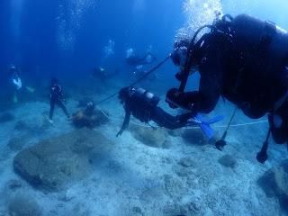 2021年7月11日の柏島ダイビング