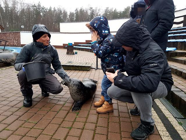 SeaPark Sarbsk - atrakcje dla dzieci w Łebie - atrakcje dla dzieci nad morzem - atrakcje dla dzieci nad Bałtykiem - podróże z dzieckiem - Morze Bałtyckie poza sezonem