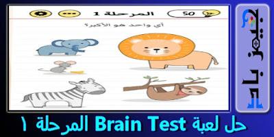 حل المرحلة 1 Brain Test