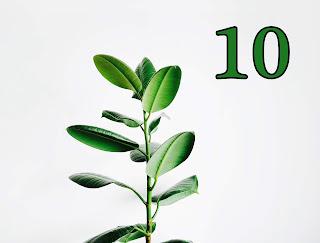 dzień urodzenia 10, znaczenie, numerologia, horoskop, 10