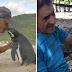 Taon-taon lumalangoy ng 8,000 kilometro ang isang penguin upang makita lang ang lalaking nagligtas sa kanya