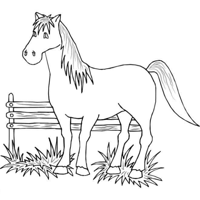 350 Desenhos De Animais Para Colorir Espaco Educar