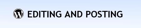 Плагины Вордпресс для оформления статей