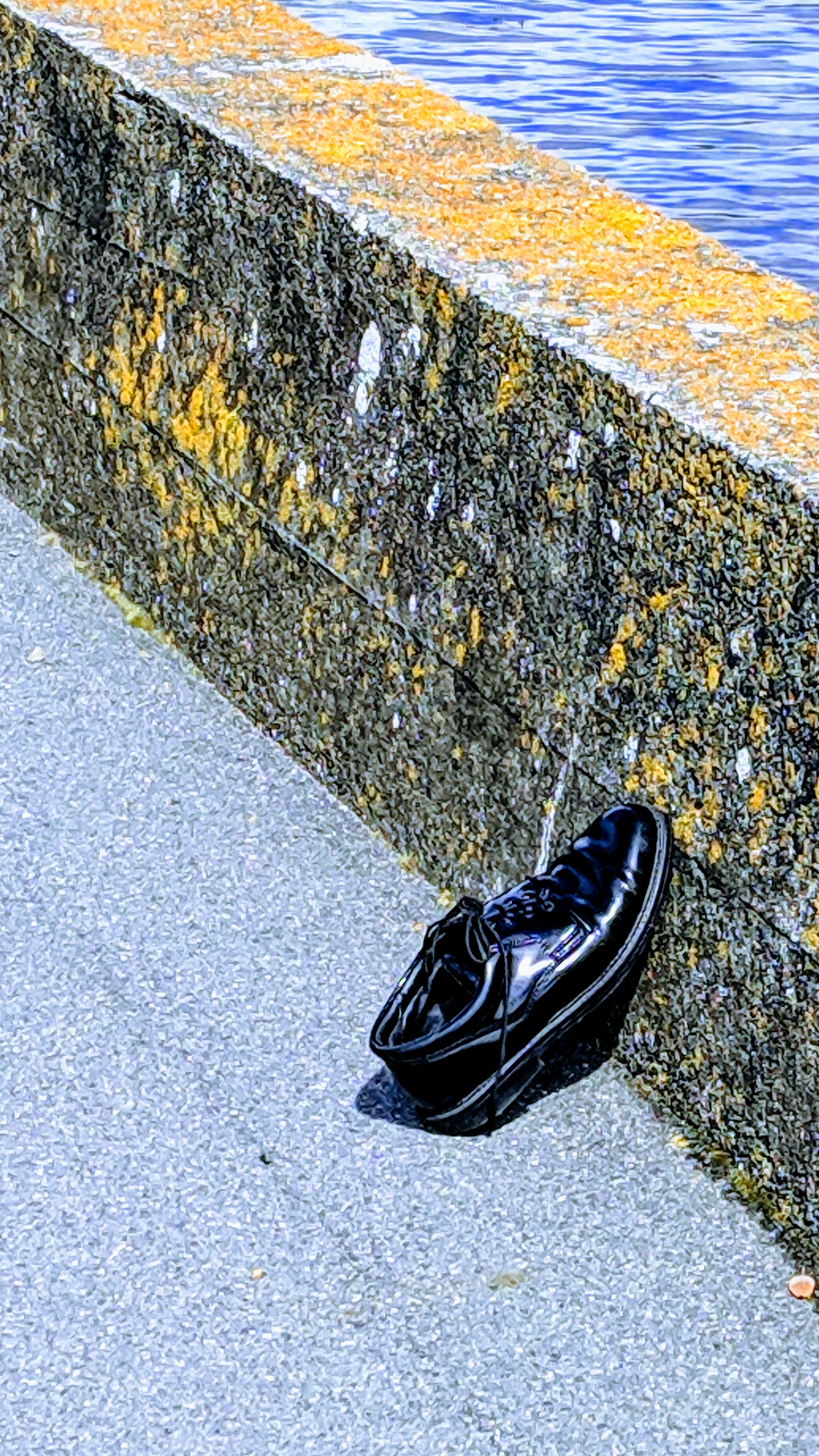 One lost shoe