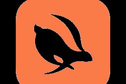 Download Turbo VPN Mod New Version [VIP Unlocked]