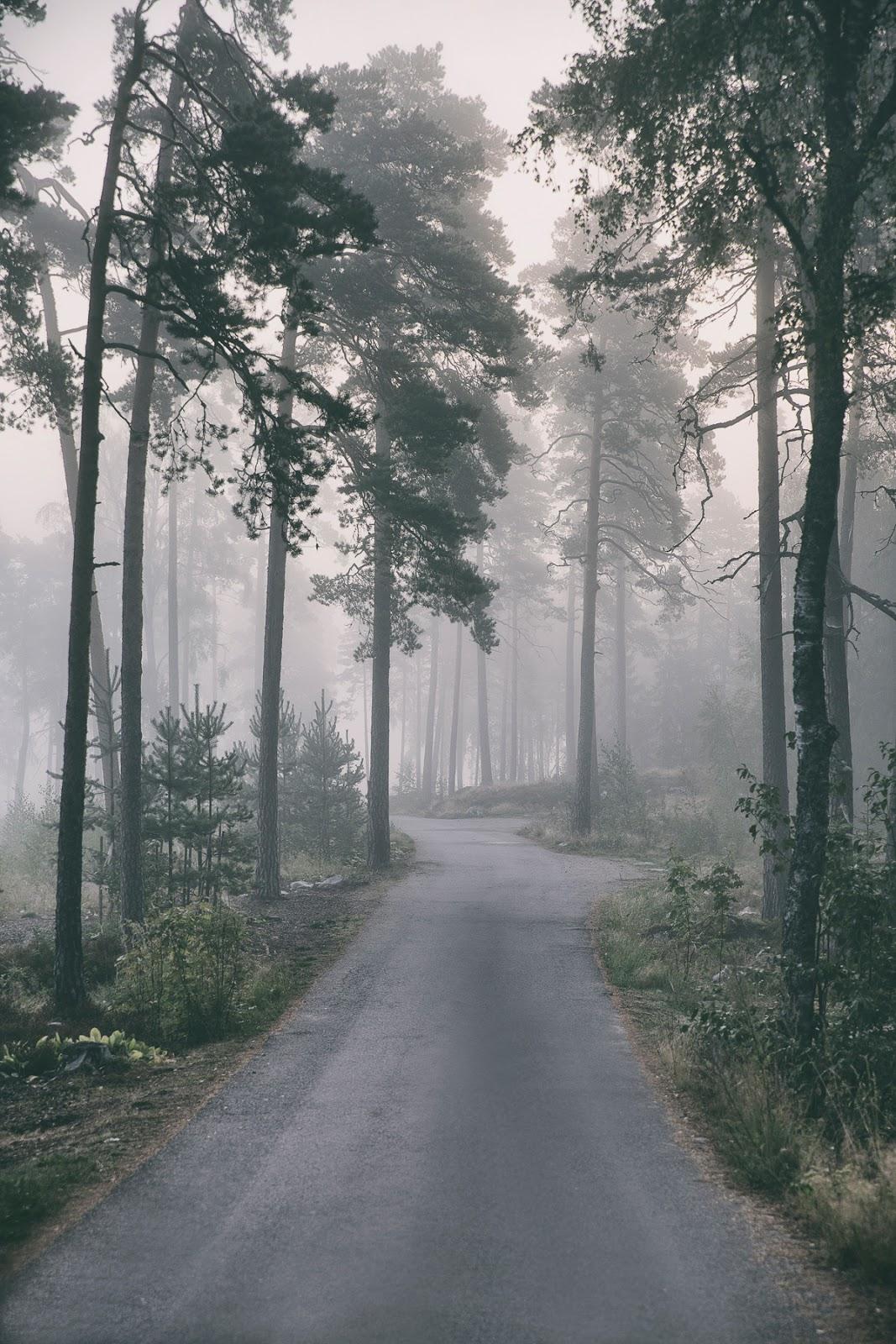 Usva, sumu, aamu, fog, nature, naturephotography, outdoors, outsoorphotography, misty, valokuvaaja, luontokuva, Frida Steiner, photographer, Canon, Visualaddict, visualaddictfrida, suomi, finland, visitfinland, finlandphotolovers, uusimaa