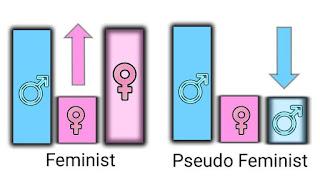 feminist and pseudo feminist