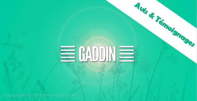 gaddin avis