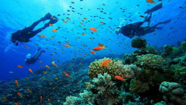 Pulau Kanawa Nusa Tenggara Timur
