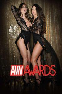 AVN Awards (2017)