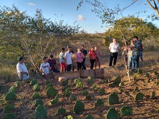 Projeto Fábrica de Solos é utilizado em trabalho de conclusão do curso de Agroecologia do IFPB-Campus Picuí
