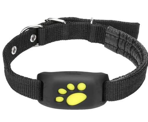 GFFG Pet GPS Tracker Dog Cat Collar Water