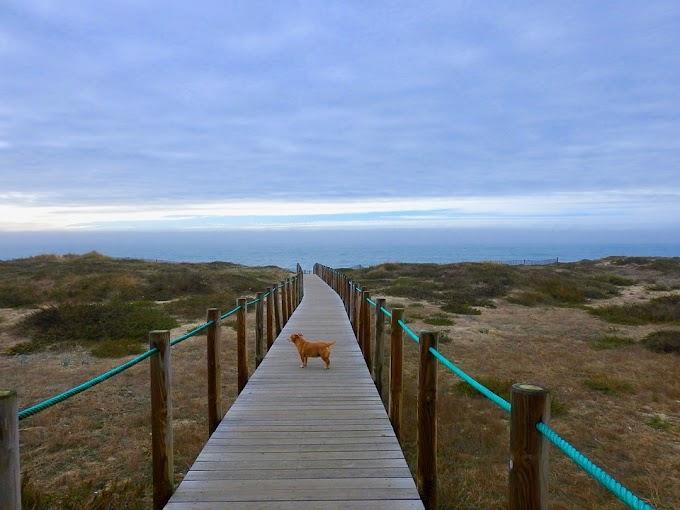 Las playas de Esposende