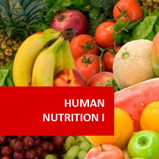 Department of Human Nutrition ~ KINGS COLLEGE OF HEALTH SCIENCES