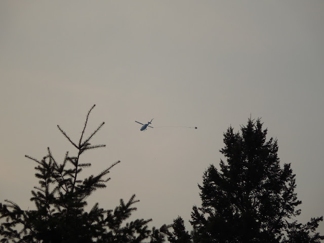 British Columbia Water Bomber