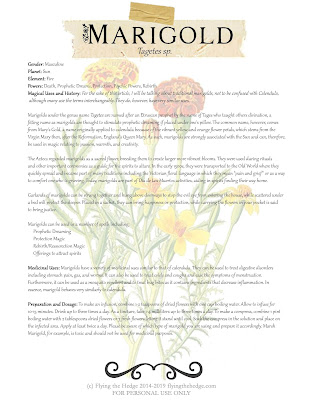 Magical and Medicinal Uses of Marigold. Includes FREE BOS page!