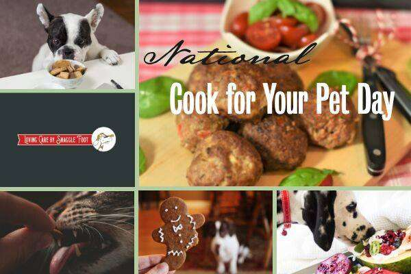 National Cook For Your Pets Day Wishes Images download